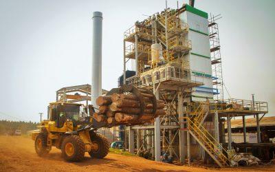 """Entró en operaciones el primer proyecto de biomasa forestal del programa """"RenovAr"""""""