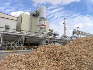Llega el Foro internacional de BioEconomía Regional que tratará innovaciones productivas a partir de la biomasa.