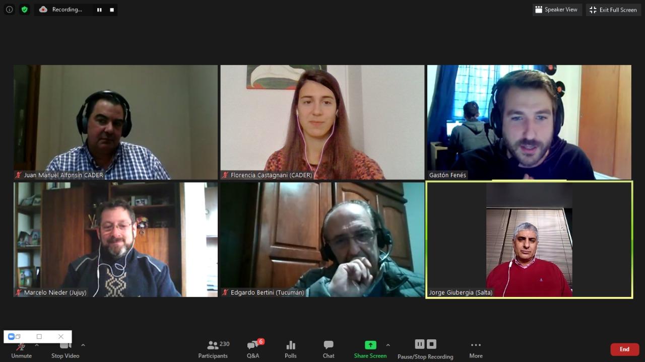 Video del Webinar de CADER que analiza oportunidades para las energías renovables en Tucumán, Salta y Jujuy